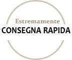 Icone-CONSEGNA-RAPIDA